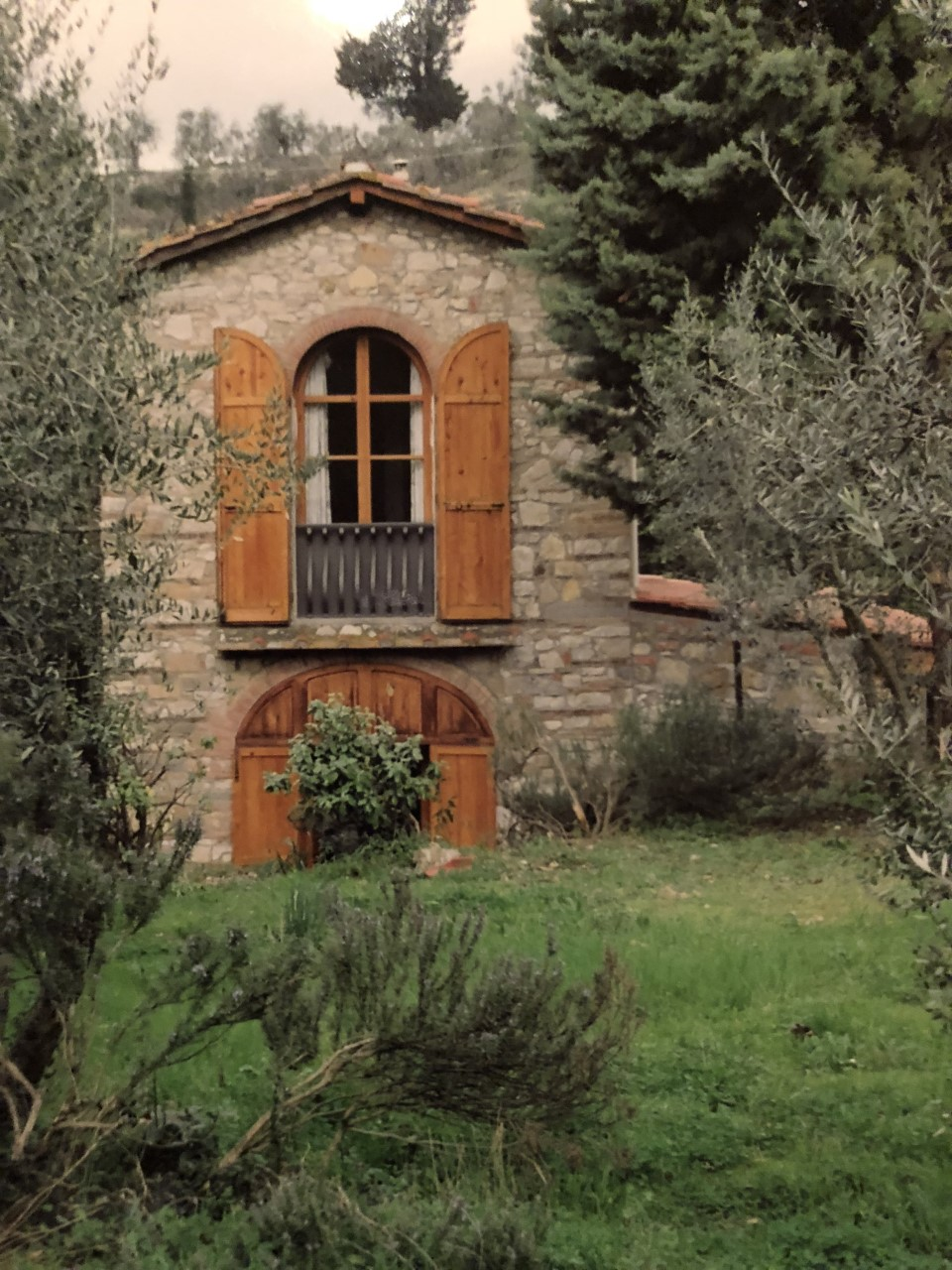 Renovated barn within the olive groves