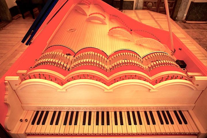 Viola organista - Wikipedia