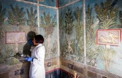Restorer working on fresco in Pompeii