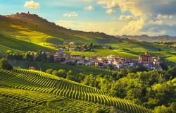 Hilly landscape with vineyards in the Langhe Piedmont Italy