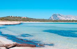 Beautiful beach in Sardinia