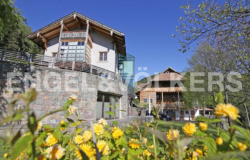 Luxury equestrian home with chalet and vineyard 0
