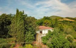Nice villa of the seventies nestled in the typical Tuscan countryside 1