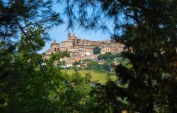 Villa In The Woods With Spectacular Views, Le Marche 4
