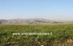 Ref. 119 villa country house near to Montefalco city 10