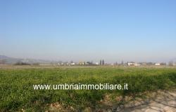 Ref. 119 villa country house near to Montefalco city 11