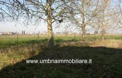 Ref. 119 villa country house near to Montefalco city 12