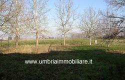 Ref. 119 villa country house near to Montefalco city 13