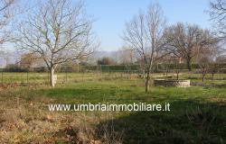Ref. 119 villa country house near to Montefalco city 14