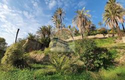 iv1101 Land with approved project for sale in Bordighera. 2