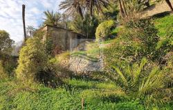 iv1101 Land with approved project for sale in Bordighera. 4
