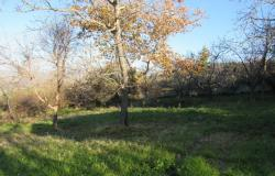 Stone barn to convert, with 1000sqm of land and mountain views for a 150sqm Villa.  3