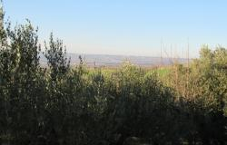 Hill top ruin to build a 300sqm house, with 10,000sqm of land, beautiful views.  14