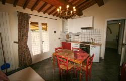 Small villa with 1500 square meters of land in the Castagneto Carducci countryside 23