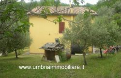 Ref. 157 villa - country house near to Cannara, Assisi and Perugia city 3
