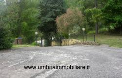 Ref. 157 villa - country house near to Cannara, Assisi and Perugia city 5