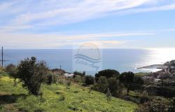 A941 Land for Sale in Bordighera, Montenero area, with a beautiful sea view. 13