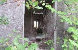 5 Hectares and 300sqm ruin in central Italy