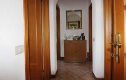 Donoratico, in the Tuscan countryside single house of two apartments with olive grove 10