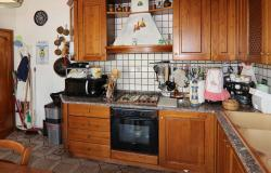 Donoratico, in the Tuscan countryside single house of two apartments with olive grove 25