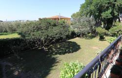 Donoratico, in the Tuscan countryside single house of two apartments with olive grove 39
