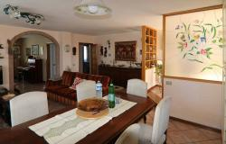 Donoratico, in the Tuscan countryside single house of two apartments with olive grove 5
