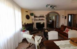 Donoratico, in the Tuscan countryside single house of two apartments with olive grove 7