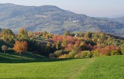 Autumn colours in the countryside around Polinago