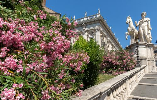 Staircase with flowers leading to the Capitoline Museums in Rome
