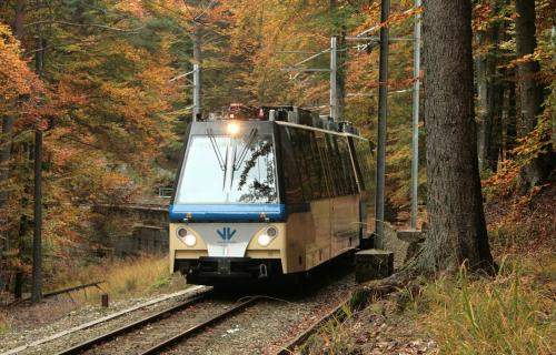 The Foliage Train riding amid fall colors and woods