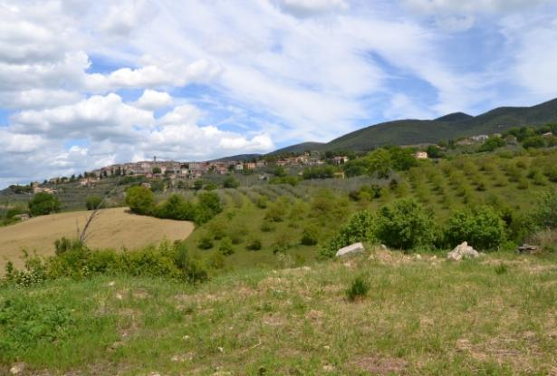 Orvieto, Montecchio, farmhouse to be finished with land rif. or690m 7