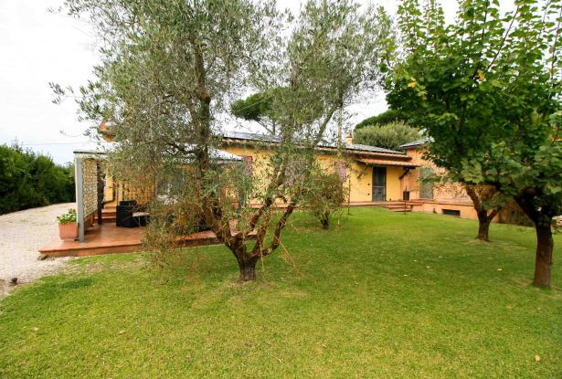 Small villa with 1500 square meters of land in the Castagneto Carducci countryside 48