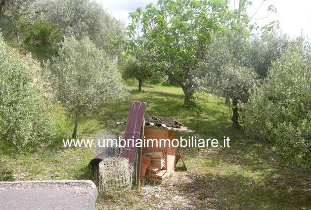 Ref. 157 villa - country house near to Cannara, Assisi and Perugia city 18