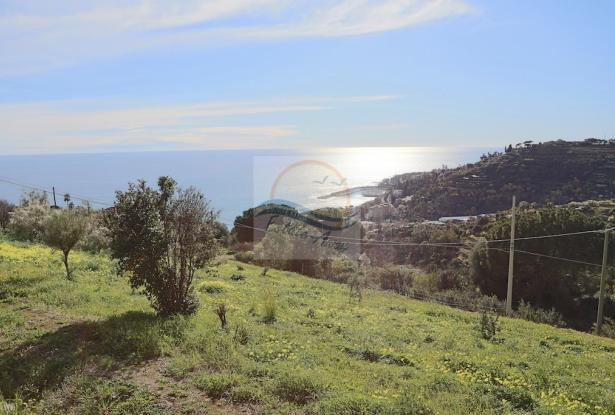 A941 Land for Sale in Bordighera, Montenero area, with a beautiful sea view. 7