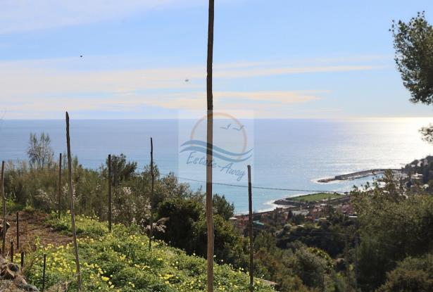 A941 Land for Sale in Bordighera, Montenero area, with a beautiful sea view. 8