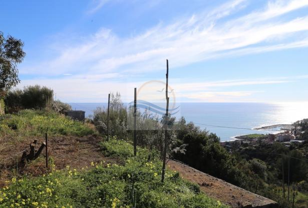 A941 Land for Sale in Bordighera, Montenero area, with a beautiful sea view. 11