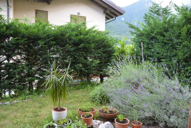 Tenno, one bedroom apartment with garden 13