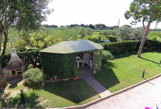 Donoratico, in the Tuscan countryside single house of two apartments with olive grove 40