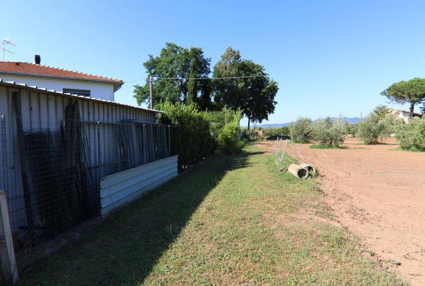 Donoratico, in the Tuscan countryside single house of two apartments with olive grove 44