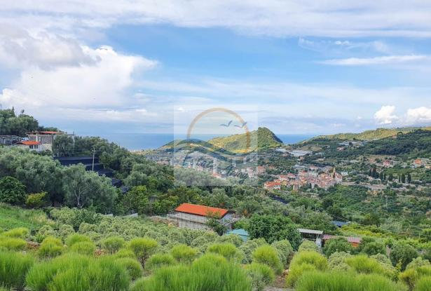 A1111 Rustic with sea view for sale in Bordighera  8