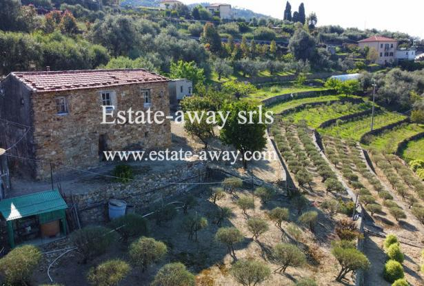 A1111 Rustic with sea view for sale in Bordighera  1