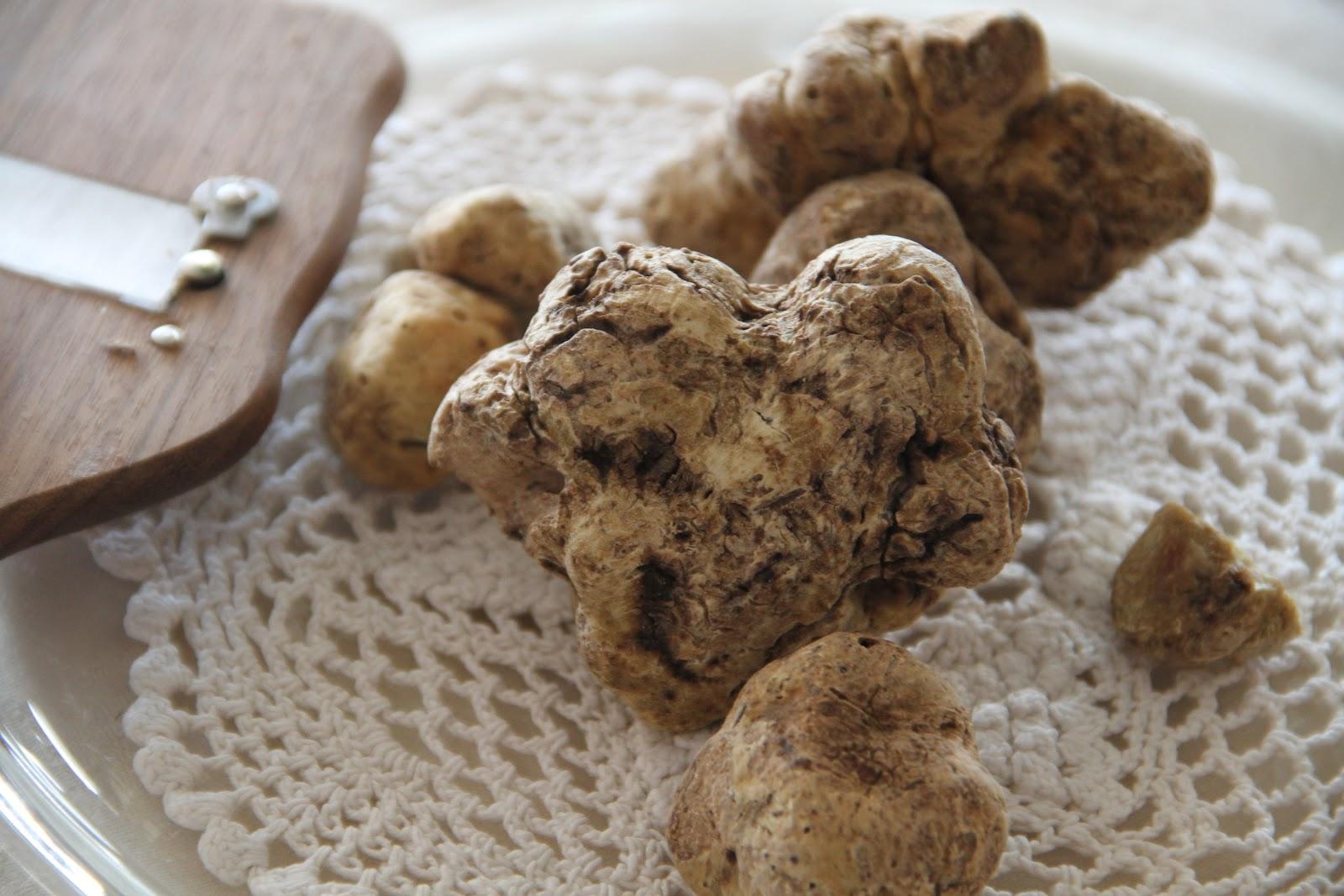 Tartufi Bianconi - Truffle cooking lessons | ITALY Magazine